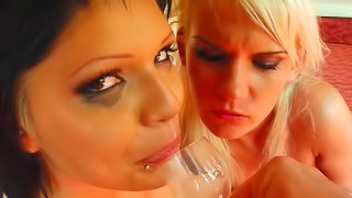 Two spicy chicks are having dirty sex with one dick