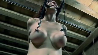 Chained Holly Wildes sucking huge toy in BDSM porn