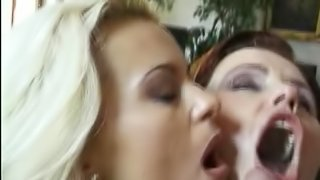 Threesome scene along girls in thong taking cum in mouth after doggystyle sex in toilet