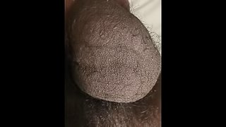 BIG BLACK BALLS ATTACTHED TO 10INCH COCK